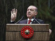 Президент Турции Реджеп Тайип Эрдоган обращается к фермерам в Анкаре