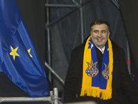 Экс-президент Грузии Михаил Саакашвили, который прибыл на Украину в составе группы европейских парламентариев, со сторонниками евроинтеграции на площади Независимости