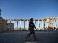 Военнослужащий в исторической части Пальмиры