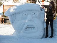 Портрет Дональда Трампа из снега в Германии