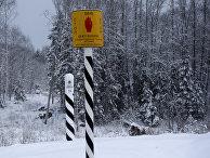 Пограничный столб на границе Эстонии и России