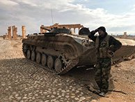 Сирийский военный возле историко-архитектурного комплекса Древней Пальмиры в сирийской провинции Хомс