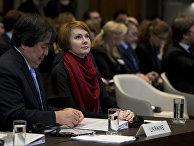 Заместитель министра иностранных дел по вопросам европейской интеграции Елена Зеркаль