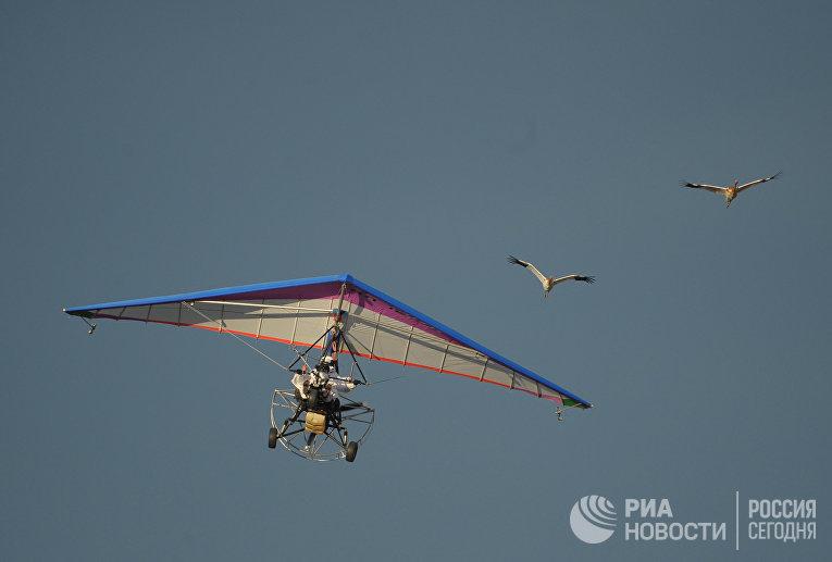 В небе - мотодельтаплан, за штурвалом которого президент РФ Владимир Путин