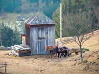11 января 2014 года. Поселок Верховина на Украине, Карпаты