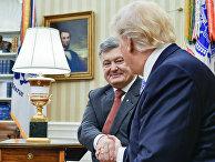 Президент Украины Петр Порошенко и президент США Дональд Трамп во время встречи. 20 июня 2017