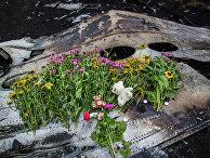 Тела погибших вывозят с места крушения малайзийского лайнера Boeing 777 в районе Шахтерска