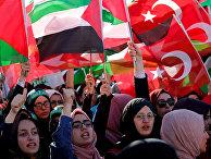 Пропалестинские демонстранты во время акции протеста против Израиля, в Стамбуле