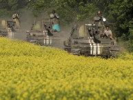 Украинские военные в окрестностях Донецка