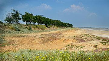 Берега озера Солёного в национальном природном парке Тузловские лиманы, Украина