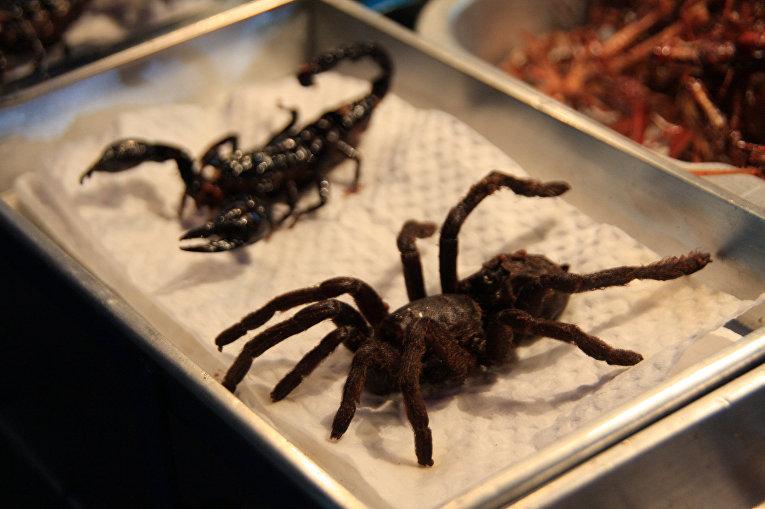 Жареный паук и скорпион