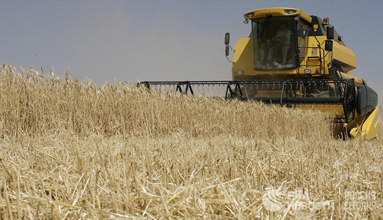 Уборка урожая зерновых культур