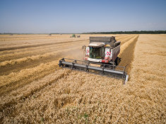 Уборка зерновых в Краснодарском крае