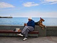 Города России. Ялта