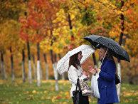 Осень на улицах Москвы