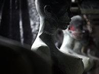 Изготовление секс-кукол во Франции