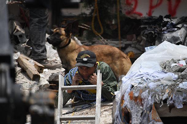 Поисковая собака стоит за спасателем, который с помощью стетоскопа пытается на слух определить местонахождение выживших