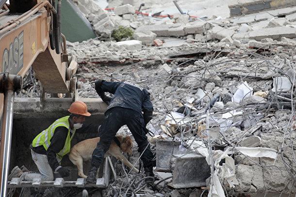 Спасатели с поисковой собакой ищут выживших, погребенных под обломками здания