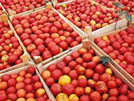 Астраханские помидоры в ящиках