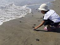 Девочка на пляже Эль-Морро Аюта в Сан-Педро-Хуамелула