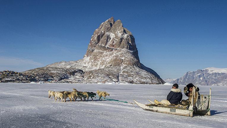 Генеральный секретарь ООН Пан Ги Мун на собачьих упряжках в Гренландии