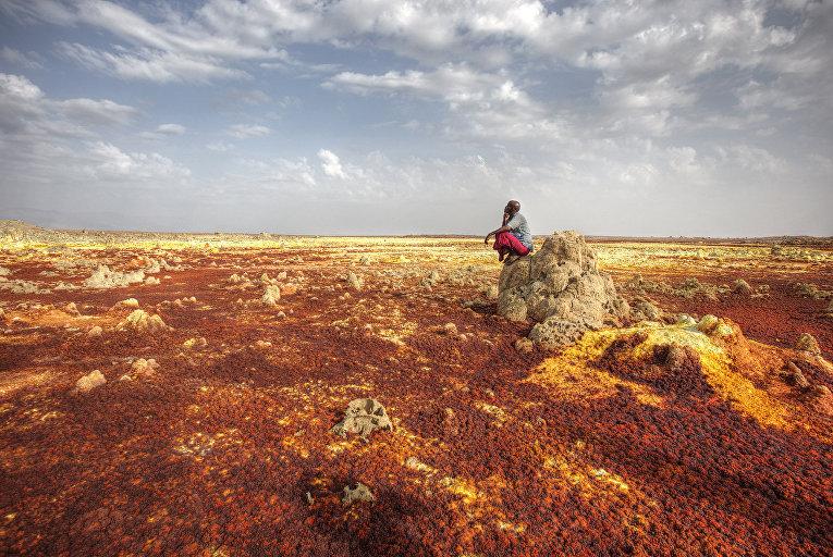 Даллол в Эфиопии