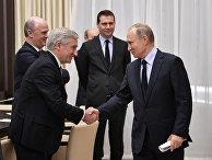 Президент РФ В. Путин встретился с представителями экономического совета Франко-российской ТПП